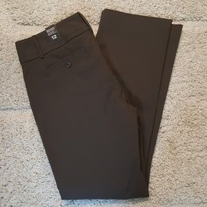 NWT Limited Brown Exact Stretch Modern Bootcut